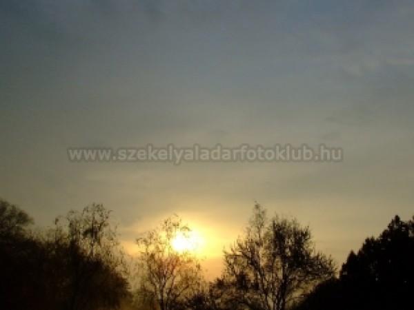 Hajnal I.